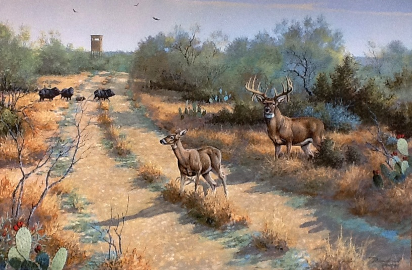 Gallery For gt Whitetail Deer Hunting Paintings