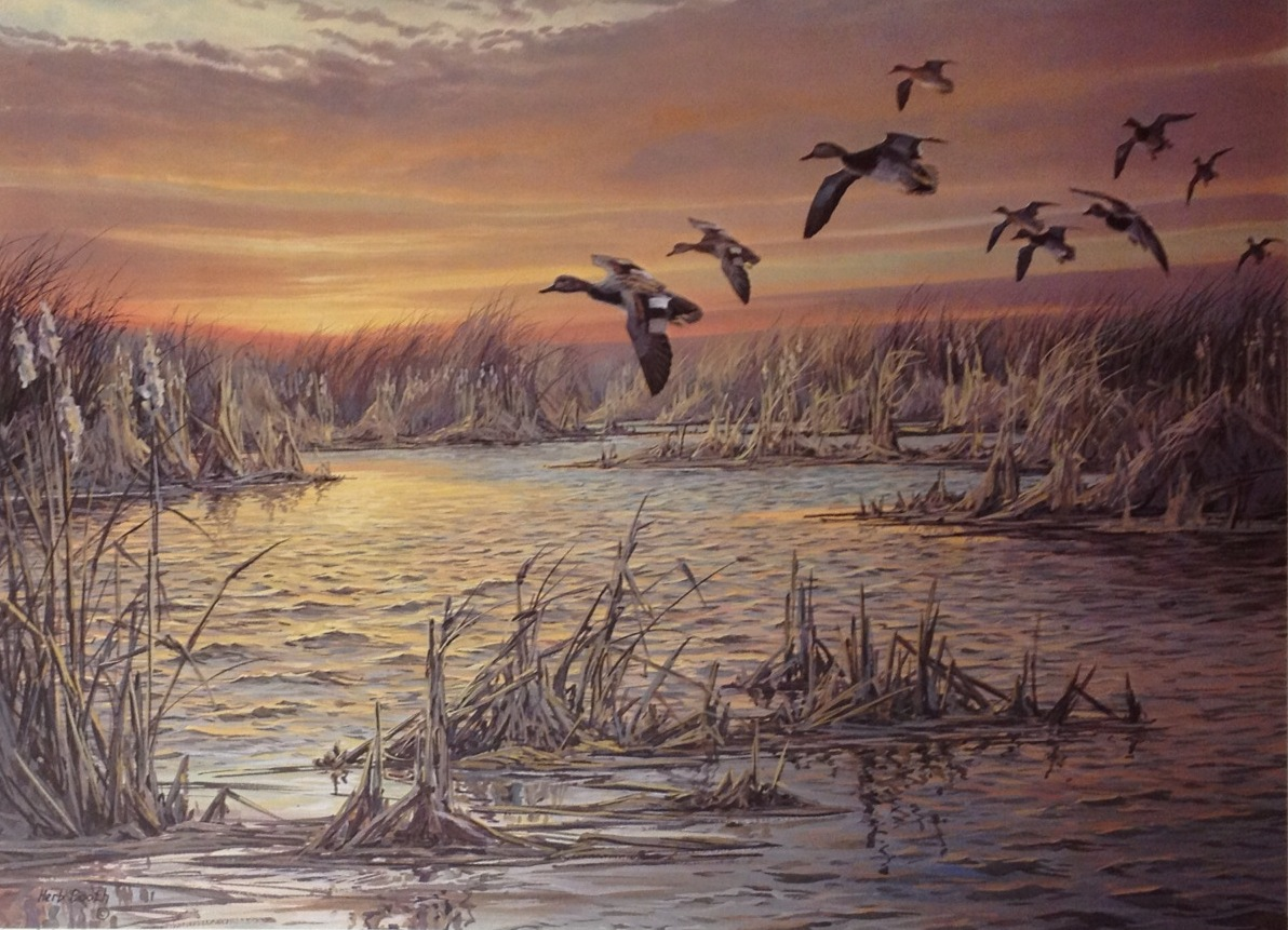 Duck At Dawn -Gadwalls -Herb Booth - Old Classic Printed 1988 Duck ...
