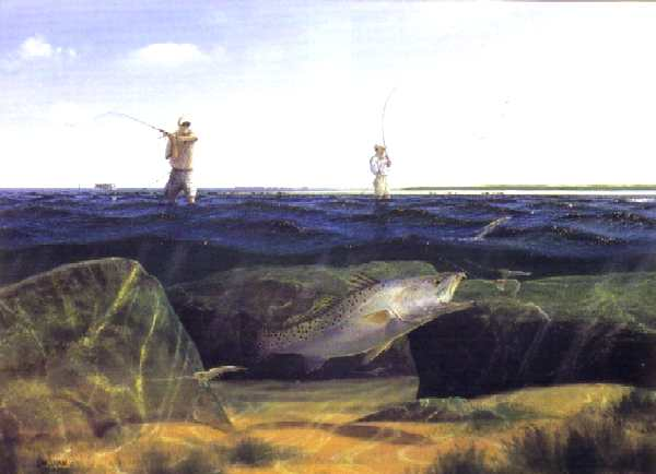 Penascal point giclee by john dearman speckled trout texas for Texas coast fishing