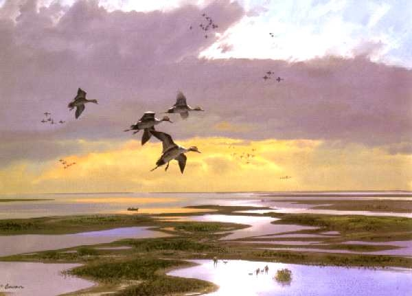 wetlands glory hole