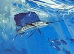 Texas Freshwater Fish Stamp Prints - 1996 Sailfish by Al Barnes