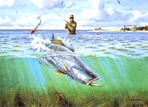 Texas Stamp Prints - 1998 Speckled Trout by David Drinkard